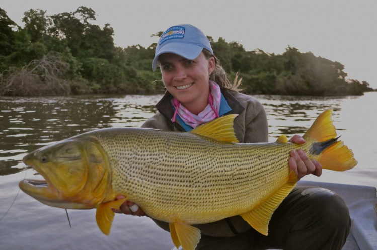 Fly fishing pic of golden dorado shared by whitney for Parana the fish
