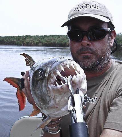 Fly Fishing for Tigers on the Okavango