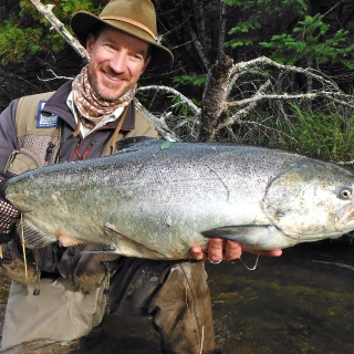 Chinook Salmon on the Boyne River.