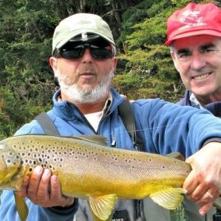 Pescado con una Elk Hair Caddis #10