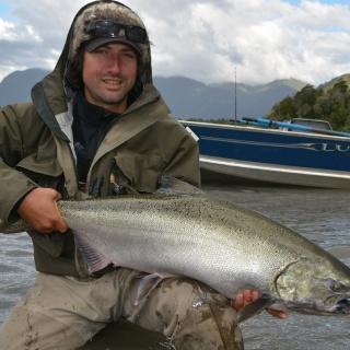 Salmón Chinook de río Yelcho