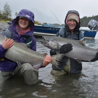 Salmones Chinook en río Yelcho