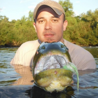 Arapey Fly Fishing