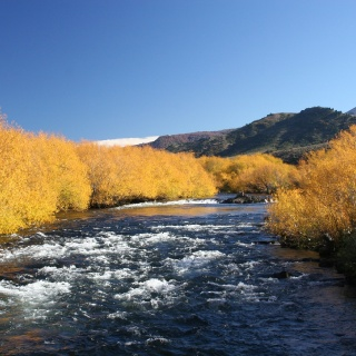Malleo River in autumn - San HUberto Lodge