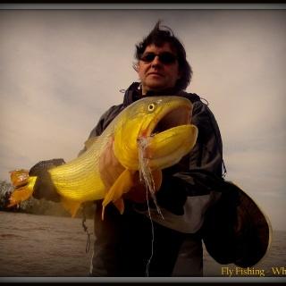 Dario Arrieta Fly fishing guide