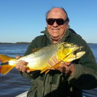 12/08/2014  Golden Dorado Parana River.  Dorados de Invierno en Rosario