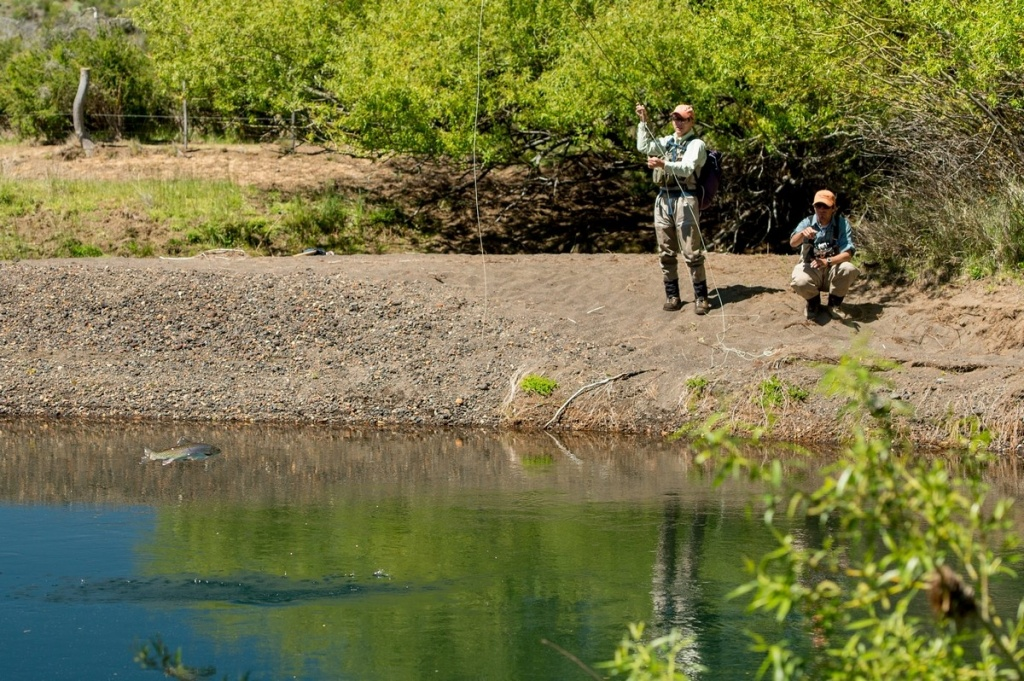 Fly fishing patagonia fly fishing outfitter fly for Patagonia fly fishing