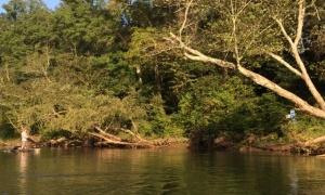 chattahoochee river, atlanta, georgia, United States