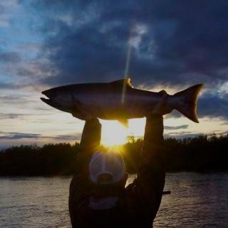 Hail to the King Salmon!