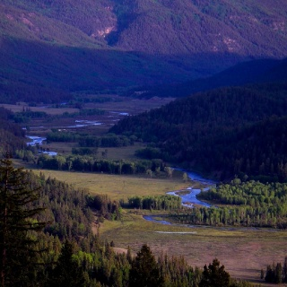 Beautiful scenery of Conejos River Valley