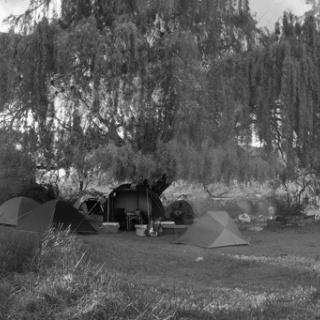 Caleufu sauce camp