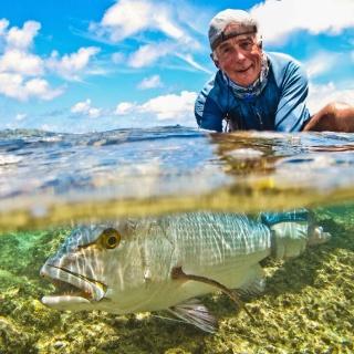Alphonse Island, Seychelles.  Bohar Snapper