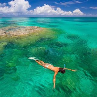 Alphonse Island, Seychelles, Snorkelling