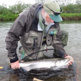 King Salmon Catch & Release