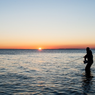 Beautiful fishing surroundings
