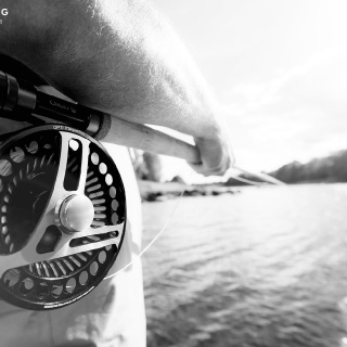 Reels with attitude...