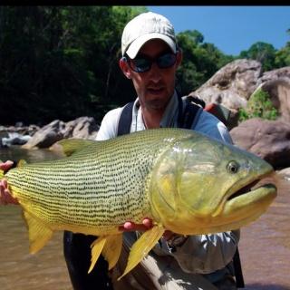 20 pounds dorado from Bolivia