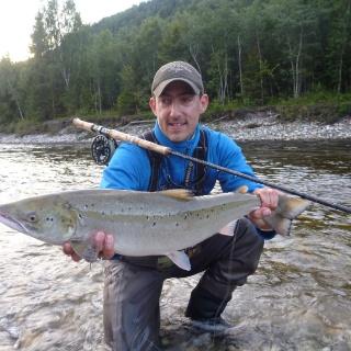 Gaula Atlantic salmon - Norway