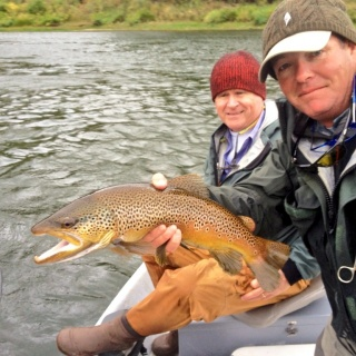 Great fall fishing for spawning brown trout.