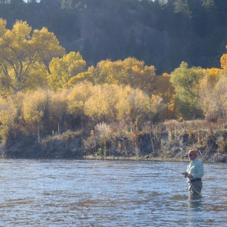 Missouri River Trico Fishing