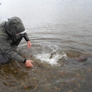Foto de pesca con mosca