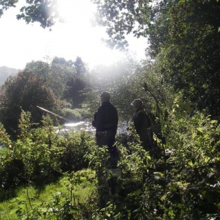Fly Fishing on the Avon Chalkstream