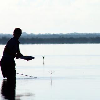 Fly Fishing for bonefish in Cozumel Island www.pescacozumel.com