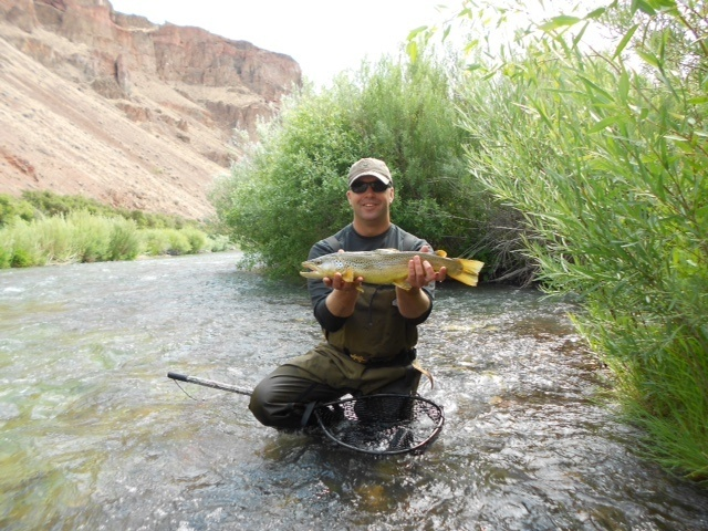 Bottorff guide service llc fly dreamers directory for Owyhee river fly fishing