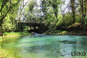 Fly Fishing in Slovenia: Mysterious Bistra and Ljubija (Angling Club Vrhnika)