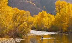 Silver Creek, Sun Valley, Idaho, United States