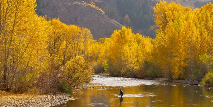 Silver Creek, Sun Valley, Idaho, United States