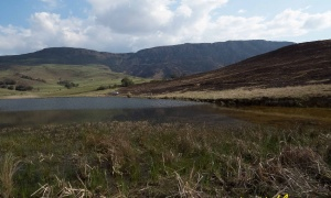 small lakes and streams, KwaZulu-Natal, South Africa