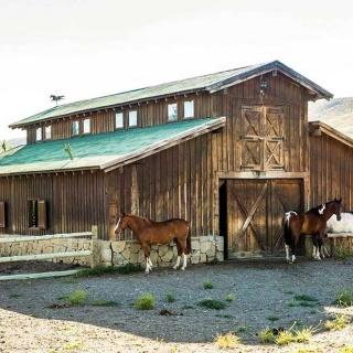 Patagonia River Ranch Lodge - Horse