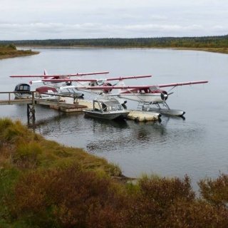 Our fleet of 3 De Havilland Beavers