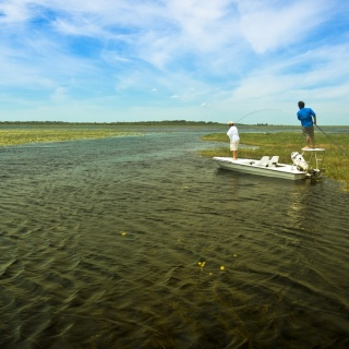 Guided fly fishing in the marshlands - Pira Lodge