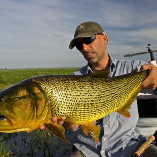 Fabian Anastasio with a big Golden Dorado - Fly fishing - Pira Lodge