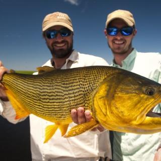 Golden Dorado - Fly fishing - Pira Lodge