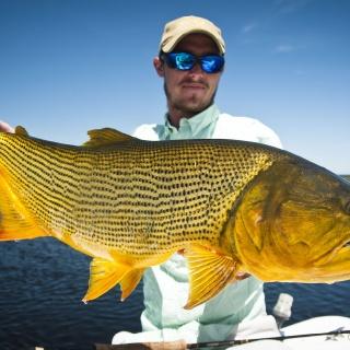 Big Golden Dorado - Fergus Kelley at Pira Lodge