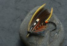 Sven Axelsson 's Fly-tying for Smolt - Image – Fly dreamers
