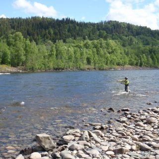 Gaula Flyfishing Lodge Beat 3 - Röskaft pool