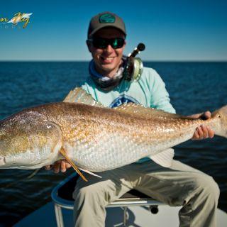 30+ lb redfish on fly