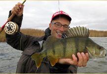 Bernd Ziesche 's Fly-fishing Picof a Perch– Fly dreamers