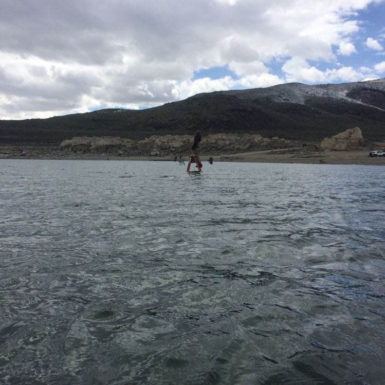 Pyramid lake, Reno, Nevada, United States