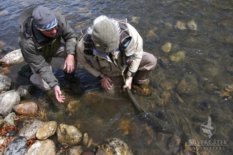 Salmon river, Idaho, Ketchum, Idaho, United States