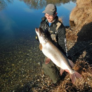 Big Pike from the Rhin river