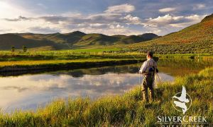Silver creek fly fishing reports fly dreamers for Silver creek fishing report