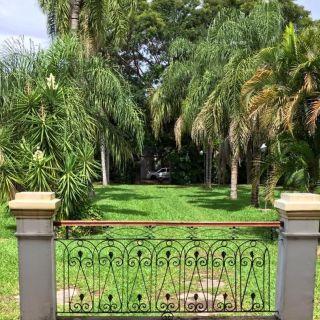 Entrada palmeras