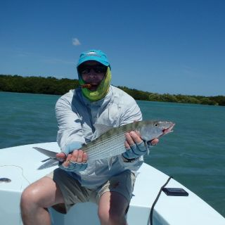 Bonefish steals a Tarpon Fly