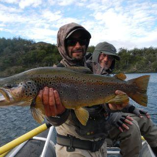 Cerro Castillo Brown trout