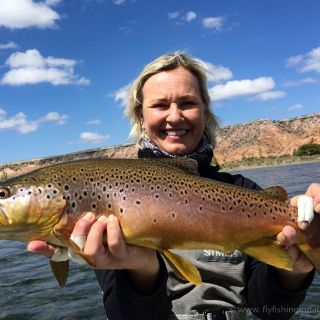 Heidi and her nice late February 2016 brown trout